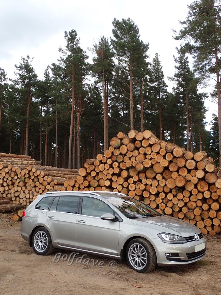 Car-with-Timber.jpg